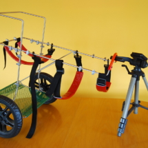 Duży wózek inwalidzki dla psa