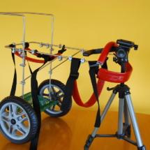 Wózek inwalidzki dla psa - średni