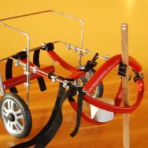 Wózek rehabilitacyjny dla psa - średni