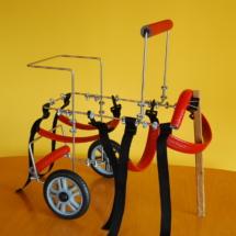 Wózek rehabilitacyjny średni z uchwytem pomagającym również łapom przednim